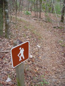 Hiking and biking trails are popular in Oneida County, Wisconsin