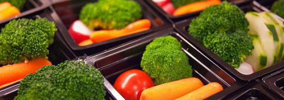 Online Nutrition Education